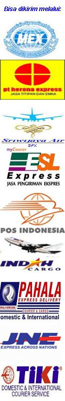 logo-ekpedisi-3